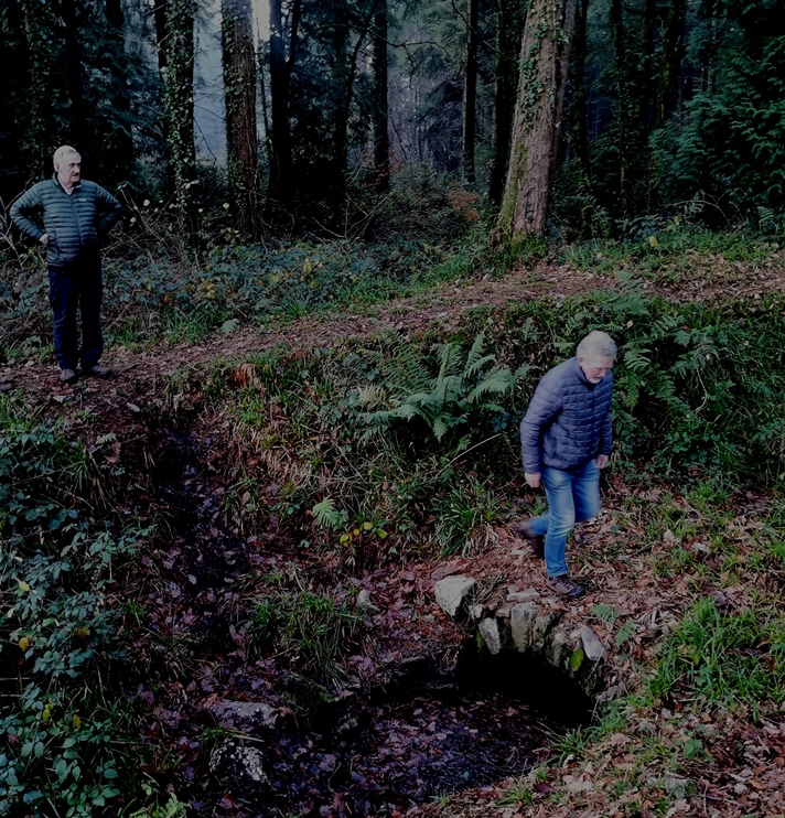 Local experts inspect the ruins in Chepstow Park Wood, December 2020